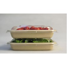 Sugarcane Food Containers with PLA lamination